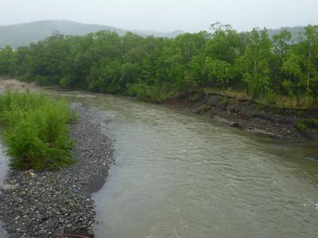 自然河岸2.jpg